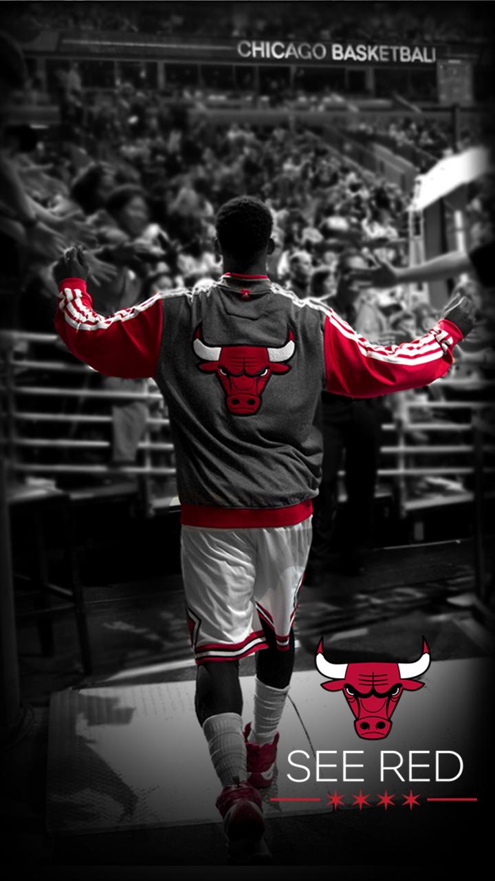 chicago bulls wallpaper iphone 6 plus